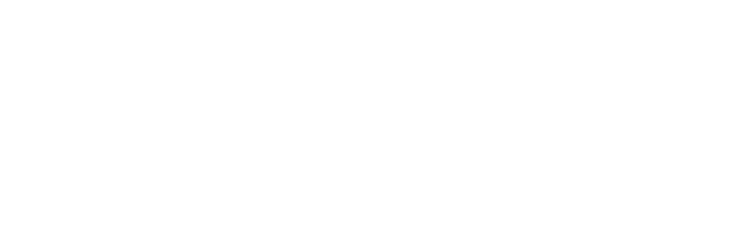 AssetSure Insurance that knows your worth